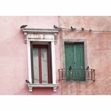 Venetian Windows and Pigeons - Fine Art Photo - Pink, Peach, Apricot, Salmon, Green, Venice, Italy