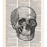 Skull - Vintage Anatomy Drawing - Dictionary Print