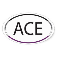 Ace Asexual LGBT Pride Oval Sticker