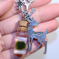 silver DEER and nano MARIMO moss ball jar necklace