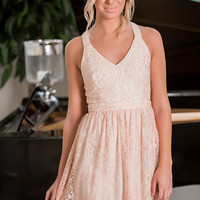 Playful Anthems Lace Party Dress (Blush)