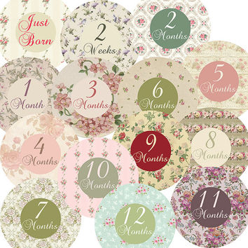 14 Cottage Chic Victorian Romantic Roses Garden Flowers Rose Flora Baby Girl Monthly Milestone Onesuit Stickers Newborn Shower Gift