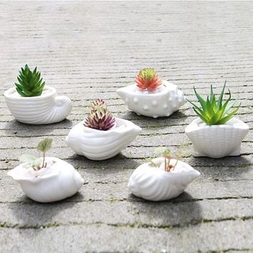 6pcs/set Mini White Succulent Holder