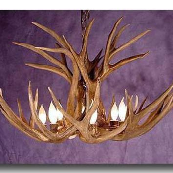 Extra Large Authentic Mule Deer Antler Chandelier
