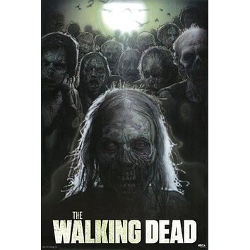 THE WALKING DEAD POSTER Scarry RARE HOT NEW 24x36