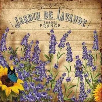 5D Diamond Painting Jardin De Lavande Kit