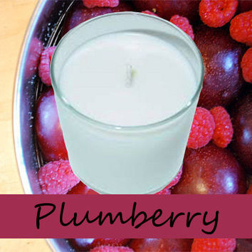 Plumberry Scented Candle in Tumbler 13 oz
