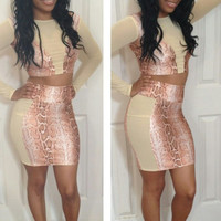Nude Snake Skin Patchwork Long Sleeve Cropped Top and Mini Skirt