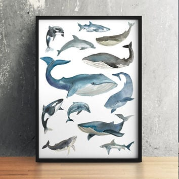 Whale poster Watercolor print Nautical print Dolphin decor 1ACW8