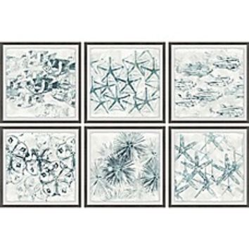 Marmont Hill Stars of the Sea Framed Hexaptych Wall Art