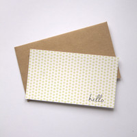 Eco Friendly Set of 12 Blank Mini Note Cards & 12 Recycled Paper Brown Kraft Envelopes Minilopes Mint or Blush Dots Hello Script