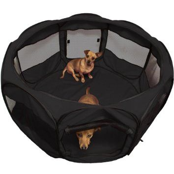 "Oxgord Animal Playpen for Pets Exercise Pen ""Travel Gear Approved"" 2-Door Portable Pop Up Indoor/Outdoor with Carry Bag Newly Designed 2016 Model, Blue, Black, 48"" x 48"" x 25"", Black"