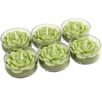 Succulent Tealight Candle Set