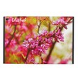 Winter Flowers In Tiberias, Israel iPad Air 2 Case