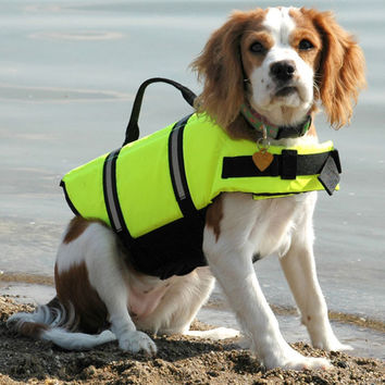 IDEPET Clothes For Dogs Pet Dog Save Life Jacket Safety Clothes Life Vest Dog Clothes Summer Swimwear Free Shipping 05