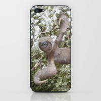 The Sloth ~ A Real Tree Hugger iPhone & iPod Skin by Bruce Stanfield