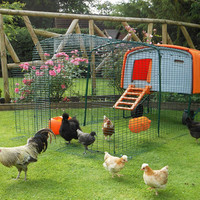 Eglu Cube Chicken House | Chicken Keeping | Store | Omlet US