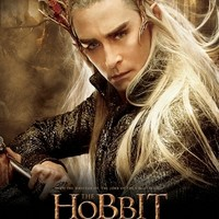 The Hobbit: The Desolation of Smaug (2013) Lee Grinner Pace 001 27 x 40 Poster