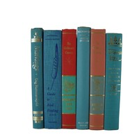 Turquoise Aqua Decorative Books for Designer Book Decor, S/6