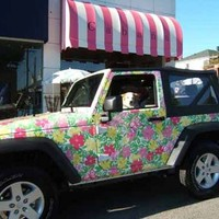 Lilly Car <3