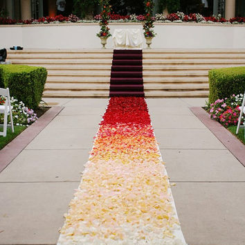 Ombre Aisle Runner,  Custom design Flower Petals are not included