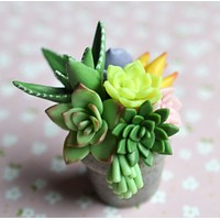 Miniature Polymer Clay Succulent Potted Plant Arrangement Magnet