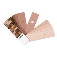 Pantone SkinTone Guide; Skin Color Hue Evaluation Tool