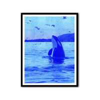 Killer Whale Photography Blue Orca Poster Wall Print