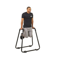 BMP Heavy Duty Stand 3000-Pound Rated Dip Station