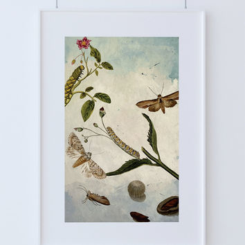 Butterfly decor Moth art Camellia gift botanical Natural Botanical print decor Moth print butterfly wall decor Caterpillar wall art Canvas