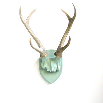 Faux Antlers Plaque Wall Hanging Rustic Modern Wall Mount Home Decor Office Kids Room in fog (gray-green), with natural looking antlers