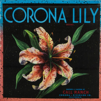Corona Lily Brand - Vintage Citrus Crate Label - Handmade Recycled Tile Coaster