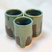 Tequila Sippers Set Sake Cups