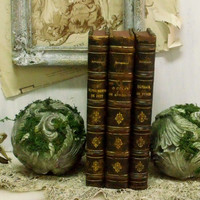 Aged stone Architectural moss balls bookends carved French chic weathered stone home decor