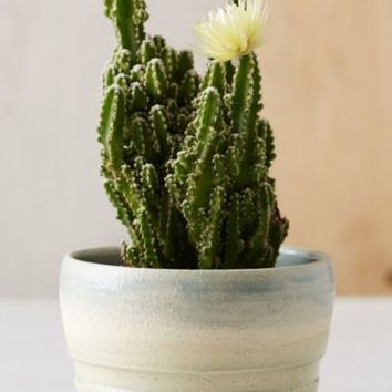 Haley Ann X UO Sand Pot Planter- Turquoise One