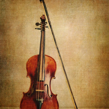 Still Life Violin Fine Art Photography from KEnzPhotography on