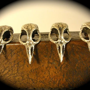 Bird Skull Knob antique silver finish