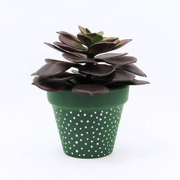Terracotta Pot, Succulent Planter, Cute Planter, Small Pot, Green Planter, Air Plant Holder, Succulent Pot, Indoor Planter, White Dots