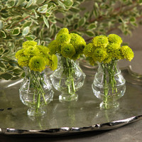 Raised Design Mini Bud Vases - Set of 6