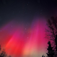 Curtains of Northern Lights above Fairbanks, Alaska, USA