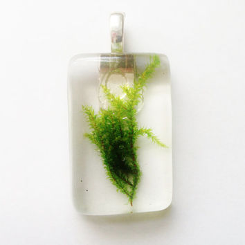 Preserved Moss Pendant, Real Green Moss in Clear Resin Jewelry