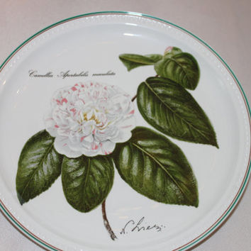 Vintage Villeroy and Boch Botanica Serie Villeroy & Boch Dinner Plate Collector's Plate - Luxembourg Porcelain Plate