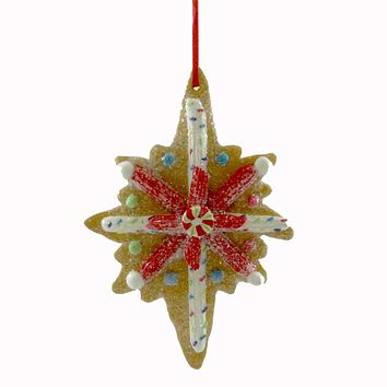 Holiday Ornament Clay Dough Star Cookie Resin Ornament