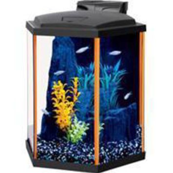 Aqueon Products - Glass - Aqueon Neoglow Aquarium Kit Hexagon