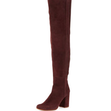 Kylar Suede Over-the-Knee Boot