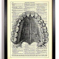 Dental Anatomy Teeth Book Upcycled Dictionary Art Vintage Book Print Recycled Vintage Dictionary Page Buy 2 Get 1 FREE