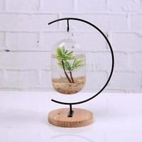 Clear Glass Flower Planter Vase Terrarium Container Fish Tank Hanging Decor