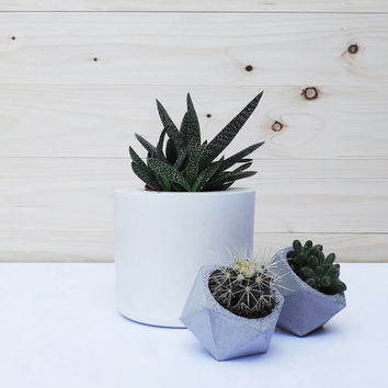 Set of 3: Large white concrete planter & two geometric concrete planters. Geometric concrete planter. Concrete planters. Minimalist style