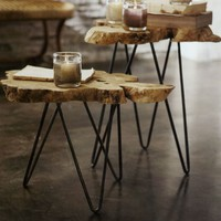 Buy Albion Burl-Slice Tables from Aldea Home