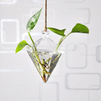 Hanging Vase Hanging Terrarium Hanging Glass Planter Clear Flower Planter Wedding Indoor Home Decoration